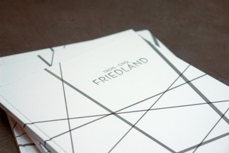 FRIEDLAND-brochure-UltraFluide